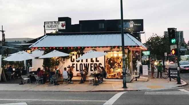 Communal Coffee Native Poppy Flowers San Diego California