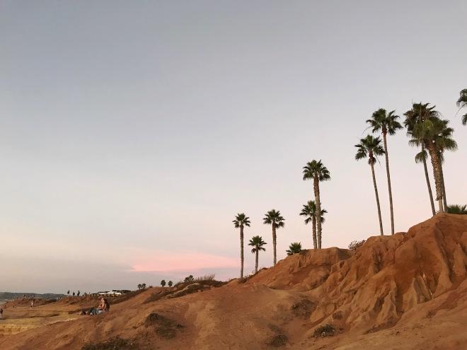 Beautiful Sunset Cliffs San Diego California Palm Trees Sand